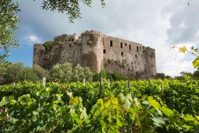 Il vino del castello
